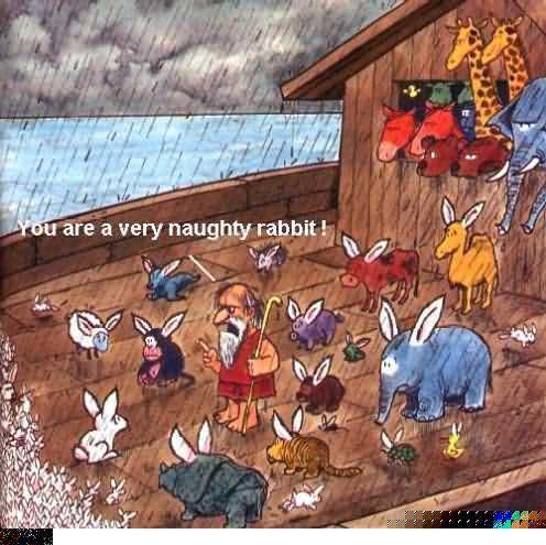 naughty rabbit.jpg