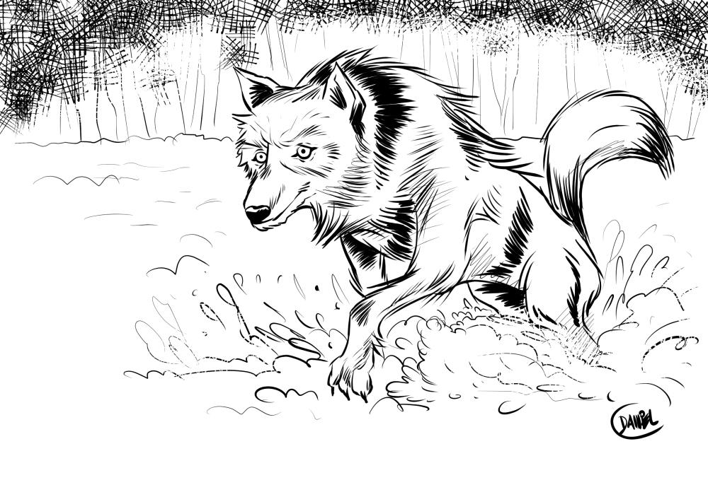 Wolf2-ModernDayJames-AnimalContest.jpg