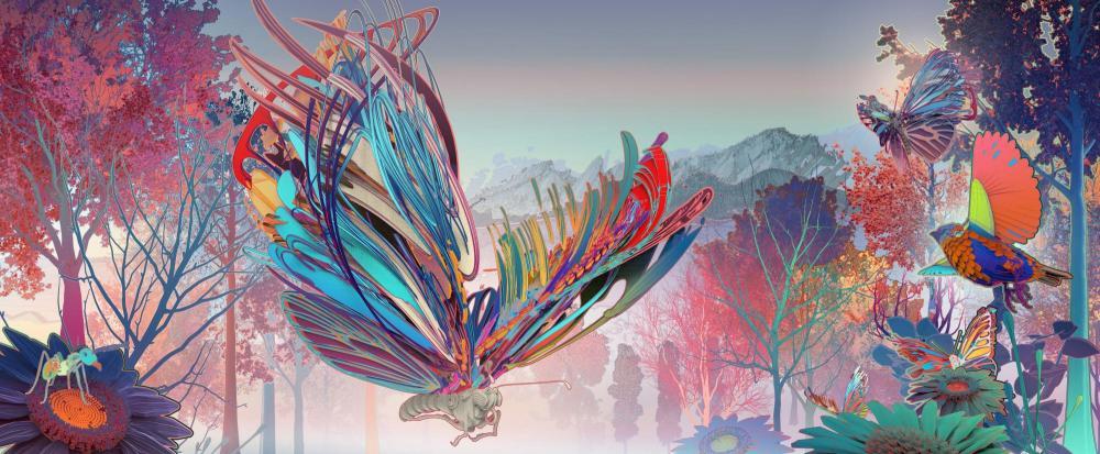 butterflymain-4965x2048.jpg