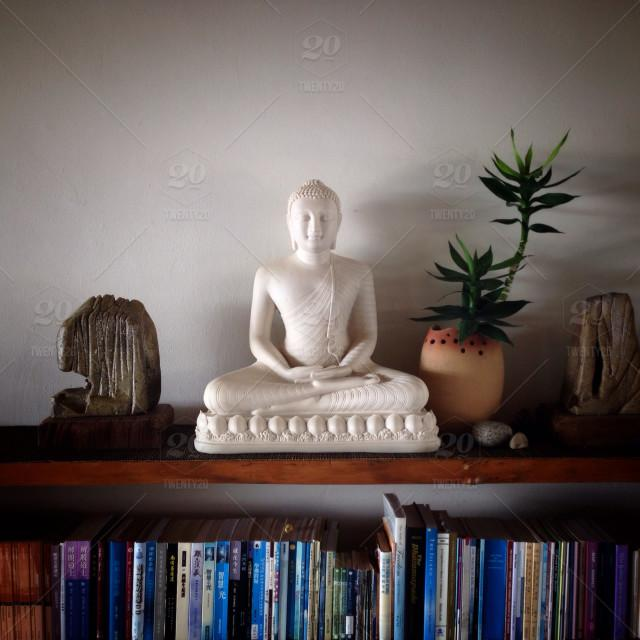 buddha on a shelf.jpg