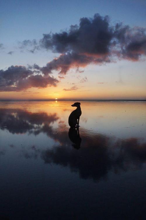 Beautiful photo by Julie Hudson.jpeg