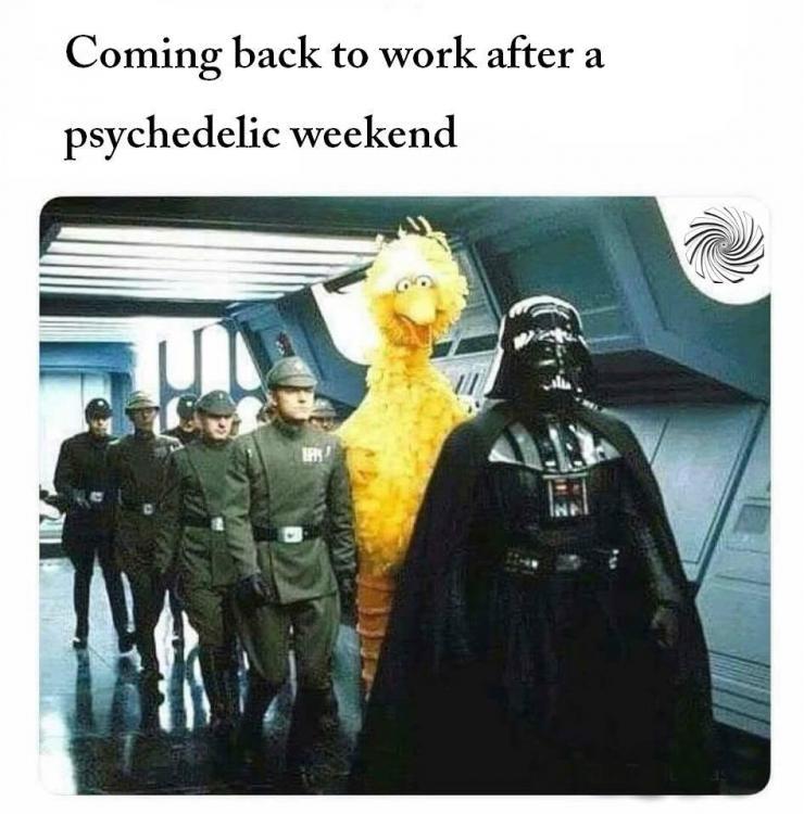 Monday-meme.jpg