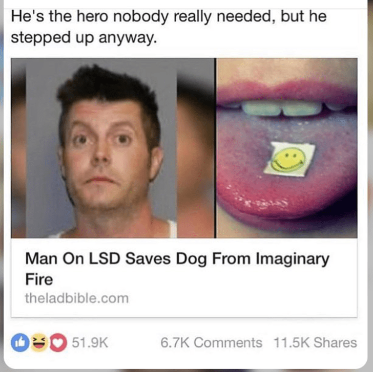 headline-that-reads-man-on-lsd-saves-dog-from-imaginary-fire.png