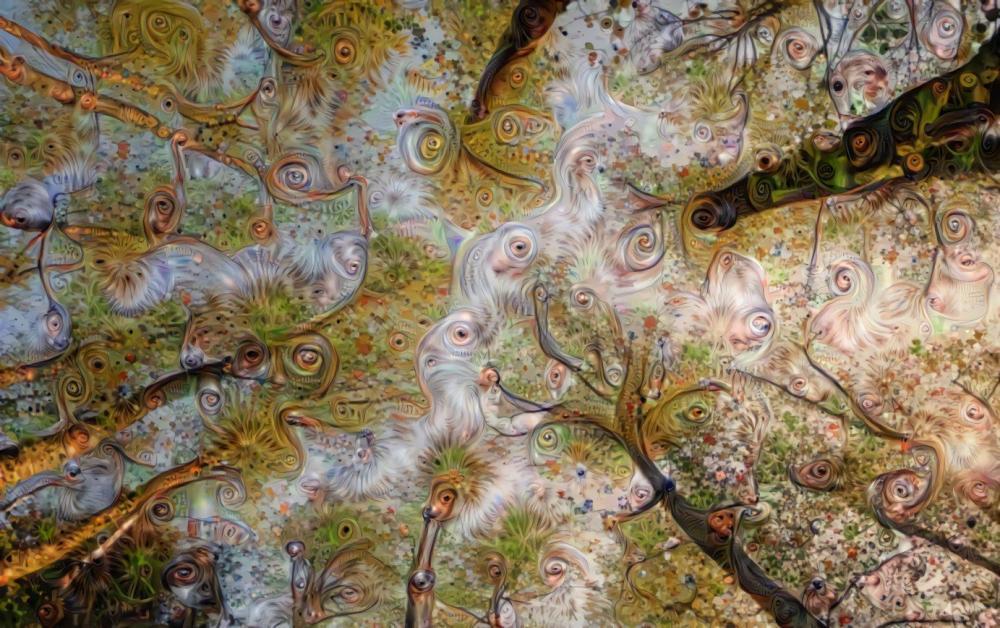 Shrooms forest.jpg