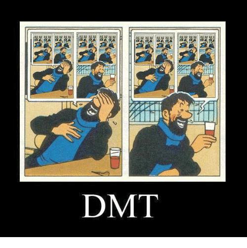 dr-dmt-1010324.png