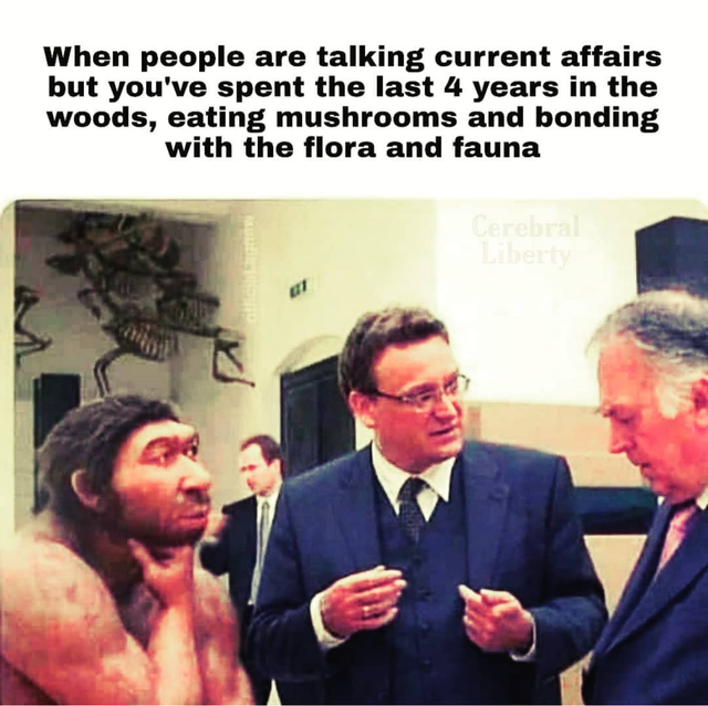 stoned_ape.png