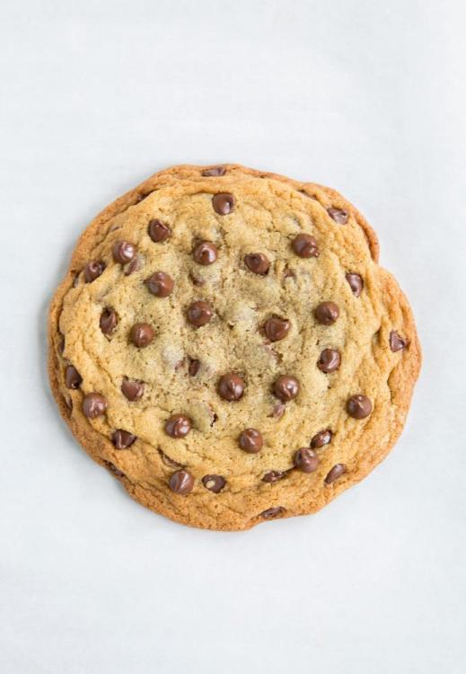 chocolate-chip-cookie-16.jpg