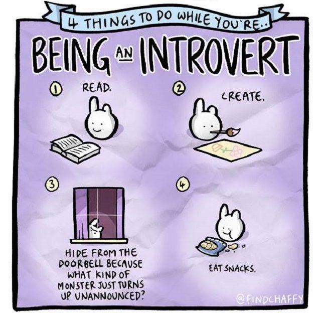 introvert-bunny-595147015f9b58f0fcb6f0ee.jpg
