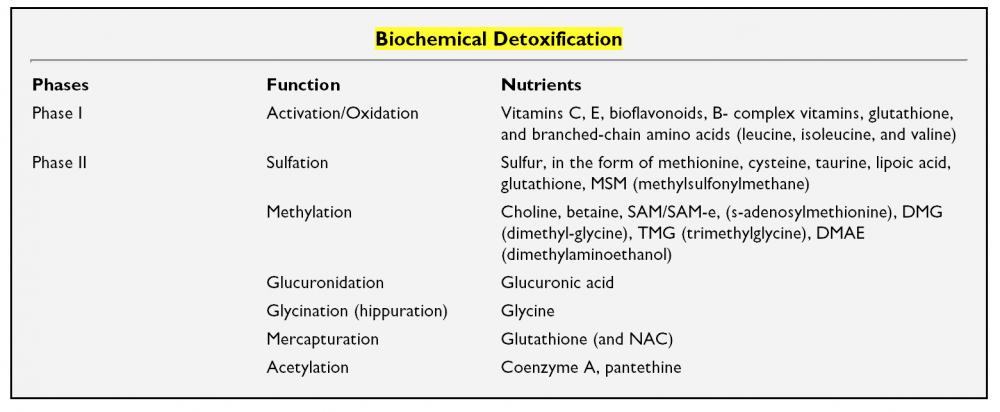 Biochemical Detoxification.png