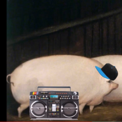 Rapping_pigs.PNG.png