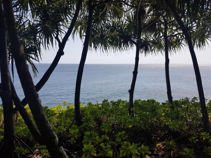 hawaii-retreat-feb-2018-08