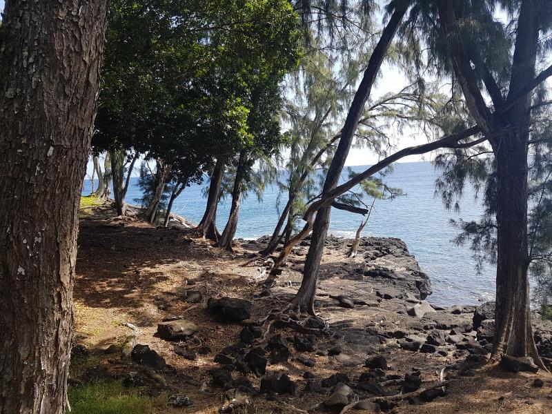 hawaii-retreat-feb-2018-15