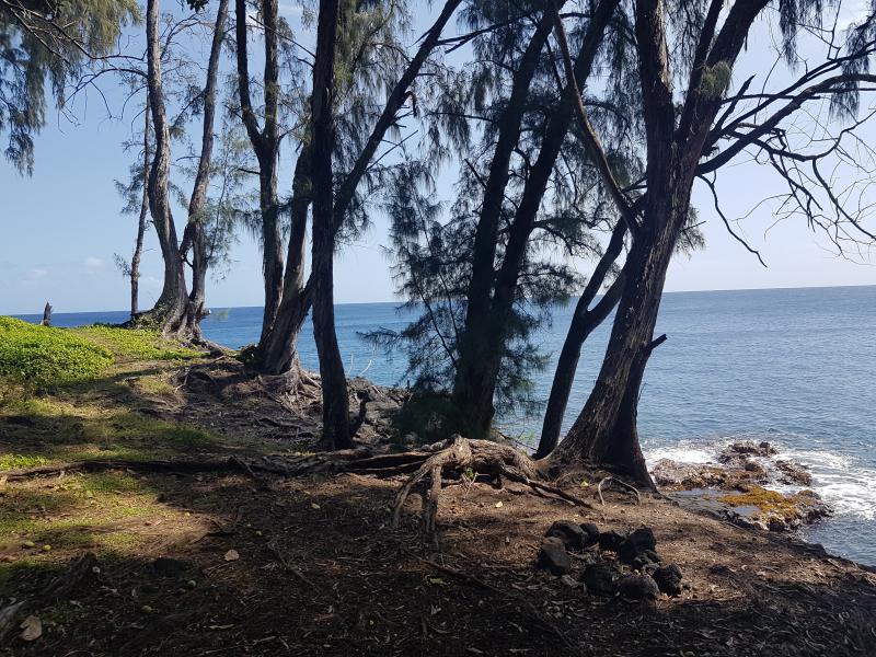hawaii-retreat-feb-2018-16